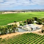 Angas Plains Wines Property view